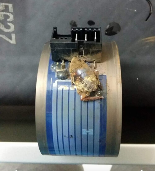 Côn trùng làm tổ trong máy bơm khiến máy rửa bát Bosch gặp trục trặc
